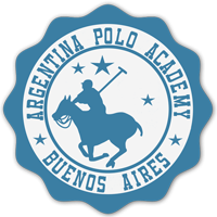 Learn polo in argentina buenos aires