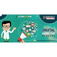 Best Digital Marketing Company in Noida | Call +91 80-0623-0790